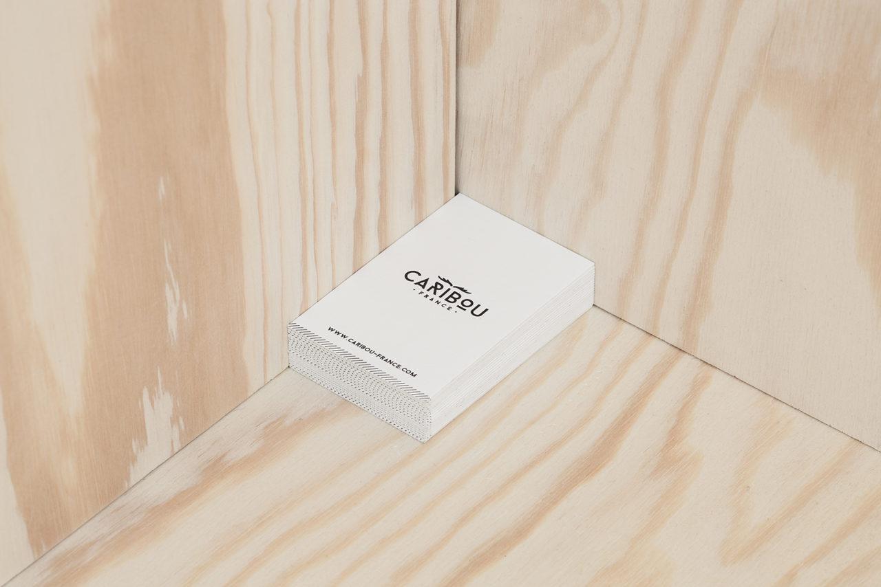 Caribou013